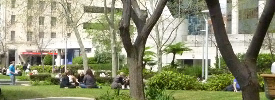 photograph of people eating in a park in Perth